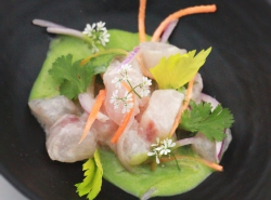 Spotlight on ceviches, carpaccios & tartares